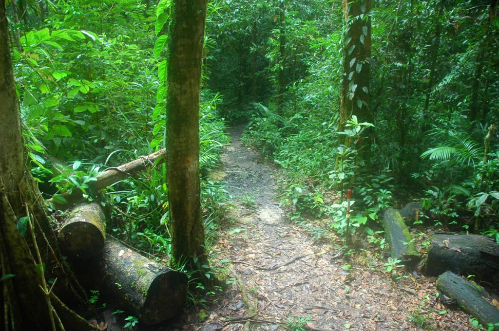 Sarawak Headhunters Trail