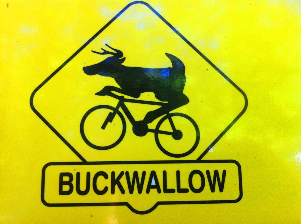 Buckwallow Logo