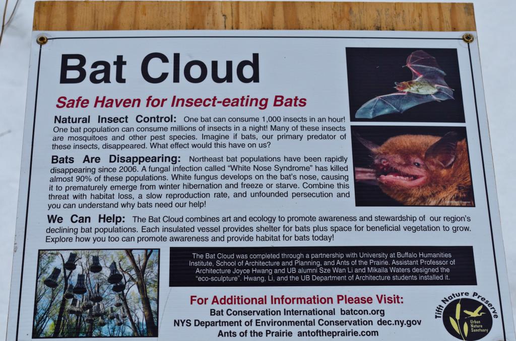 Bat Shelters!